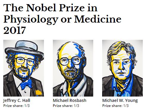深度解读2017年诺奖获奖原因:生物钟的分子研究